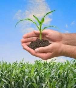 Take The Plant-Based Challenge