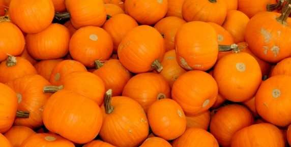 Pumpkins, More than just for the Holidays